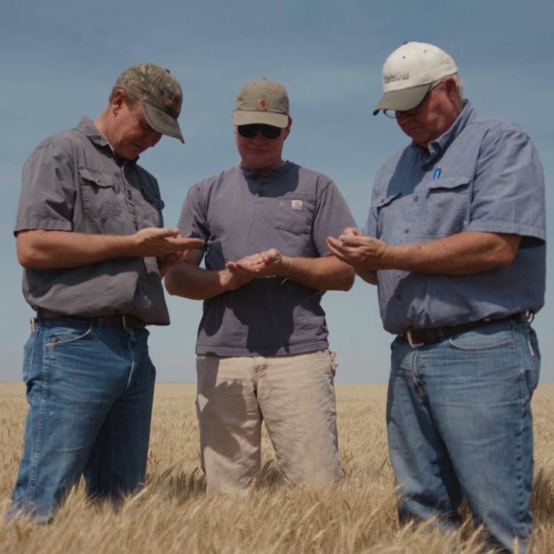Three farmers talking.